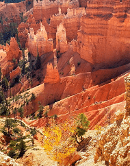 2-Day National Parks Camping Tour Bryce Canyon, Zion National Park