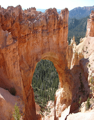 Bryce Canyon National Park Panoramic Day Trip Tour