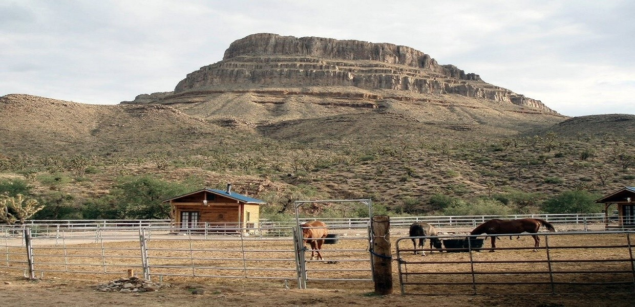 The Tour Exchange Ultimate Grand Canyon Western Horseback Experience
