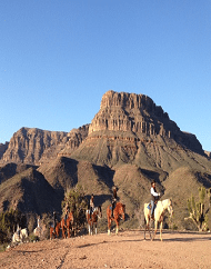 Ultimate Grand Canyon Western Ranch Horseback Experience