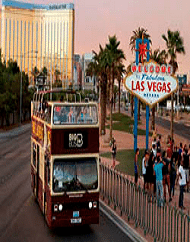 Big Bus Panoramic Night Tour Las Vegas Transportation