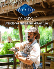 Everglades and Miami Airboat Combo Adventure Tour