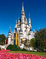 Walt Disney World Park Hopper Adult Ticket Packages