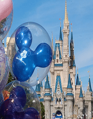 Walt Disney World Park Magic Your Way Park Hopper Ticket Packages