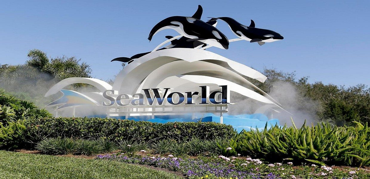 The Tour Exchange SeaWorld Orlando Single Day Tickets