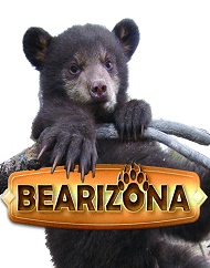 Bearizona Drive-Thru Wildlife Park Admission Tickets
