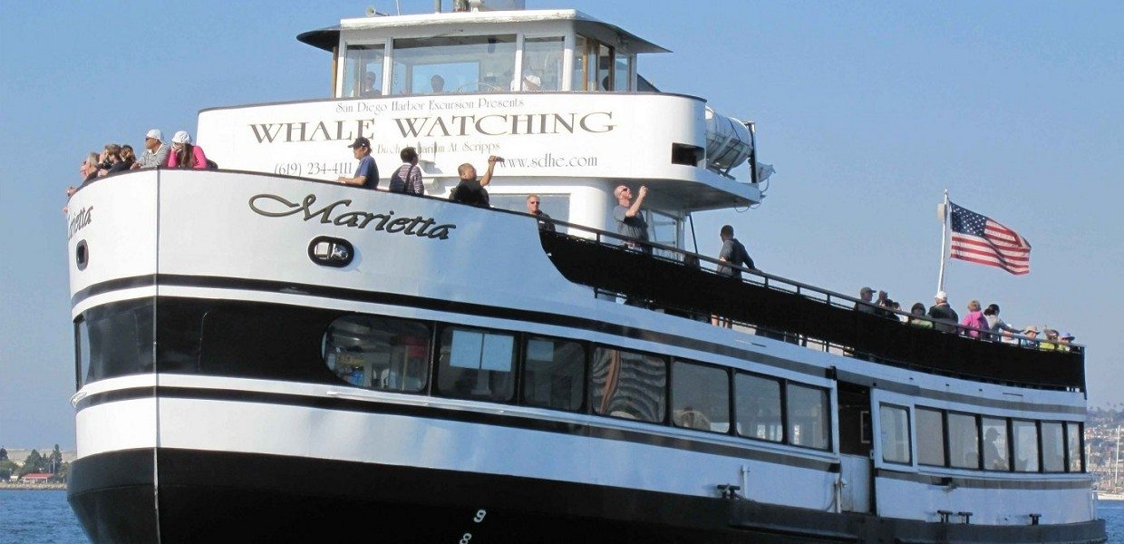 The Tour Exchange San Diego Whale Watching Flagship Cruises